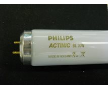 Philips * Actinic Bl 20W 38X595mm Flugfångare